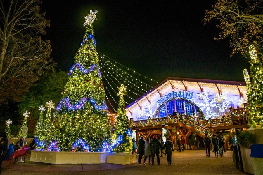 Festhaus Christmas Time